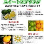 sweet_spring_001